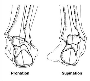 Pronation supinationn