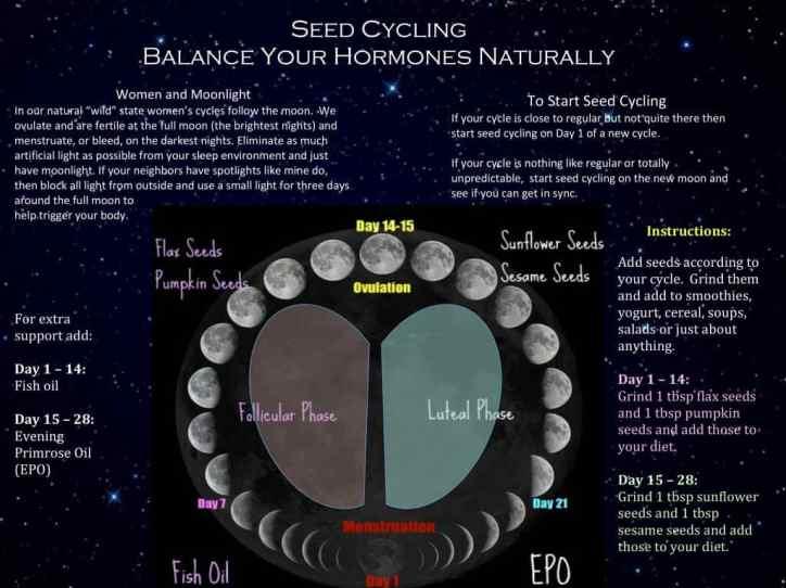 Seed-Cycle